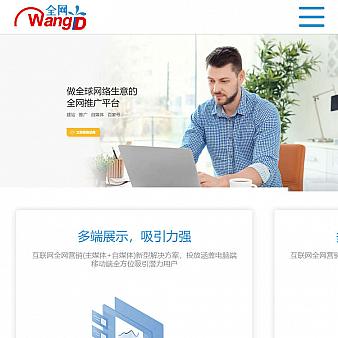 移动版网络推广平台页面模板